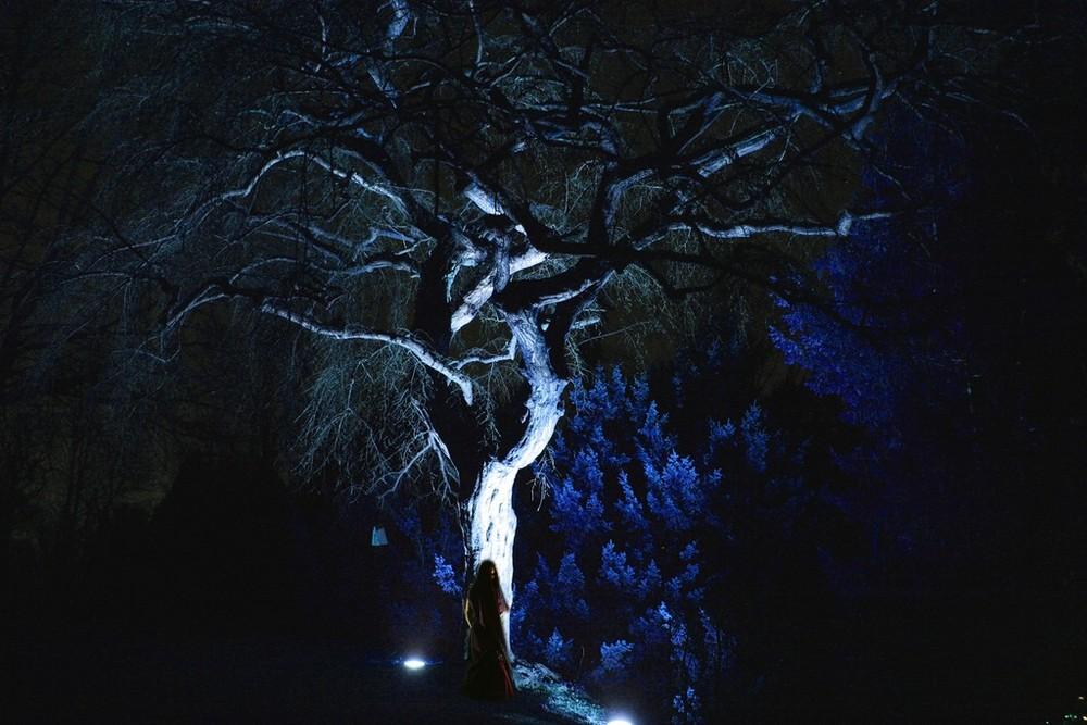 Nachtgestalten Teil 2