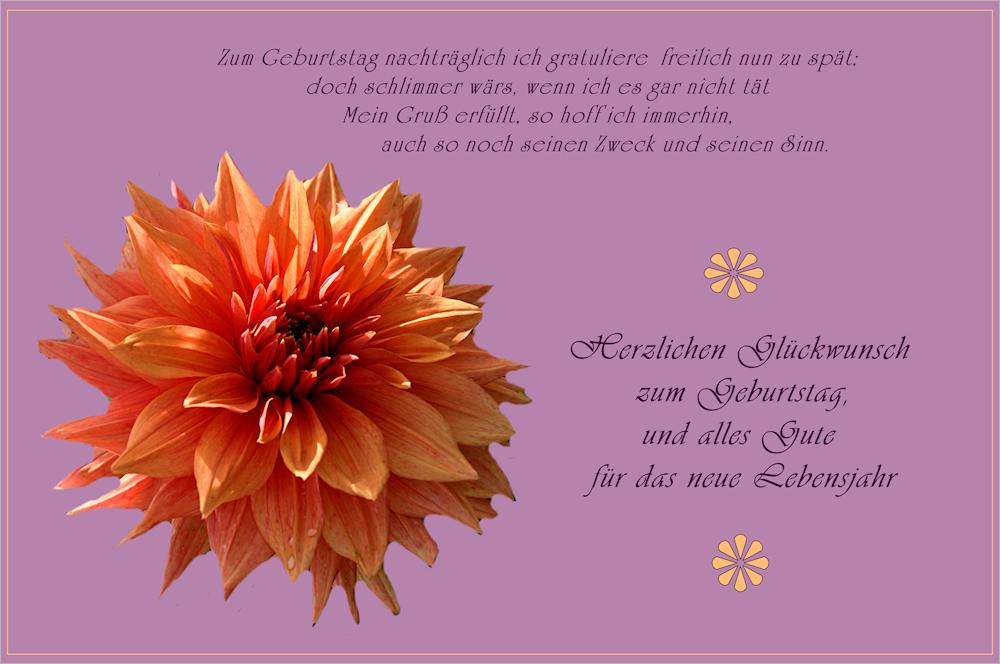 Nachtraglich Alles Gute Zum Geburtstag Foto Bild Karten Bilder