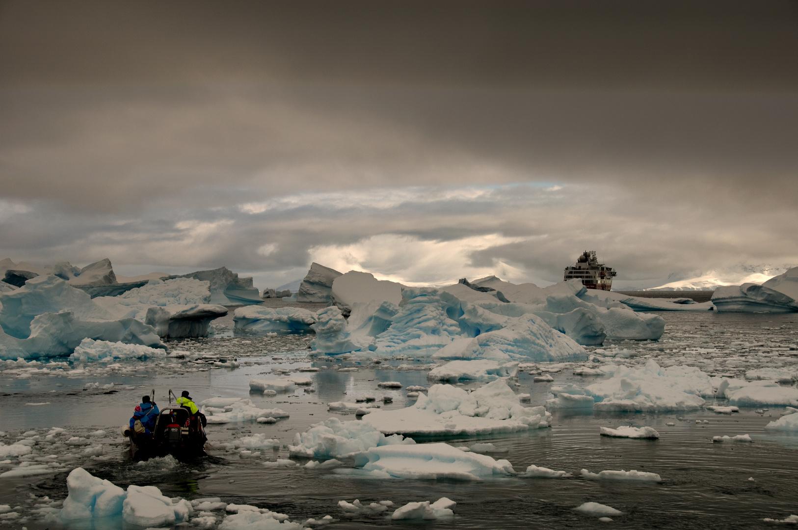 Nachtrag Antarktis IV