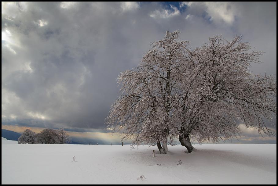Nachtrag zum Winter 1