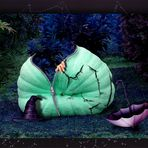 nachts im Garten ......