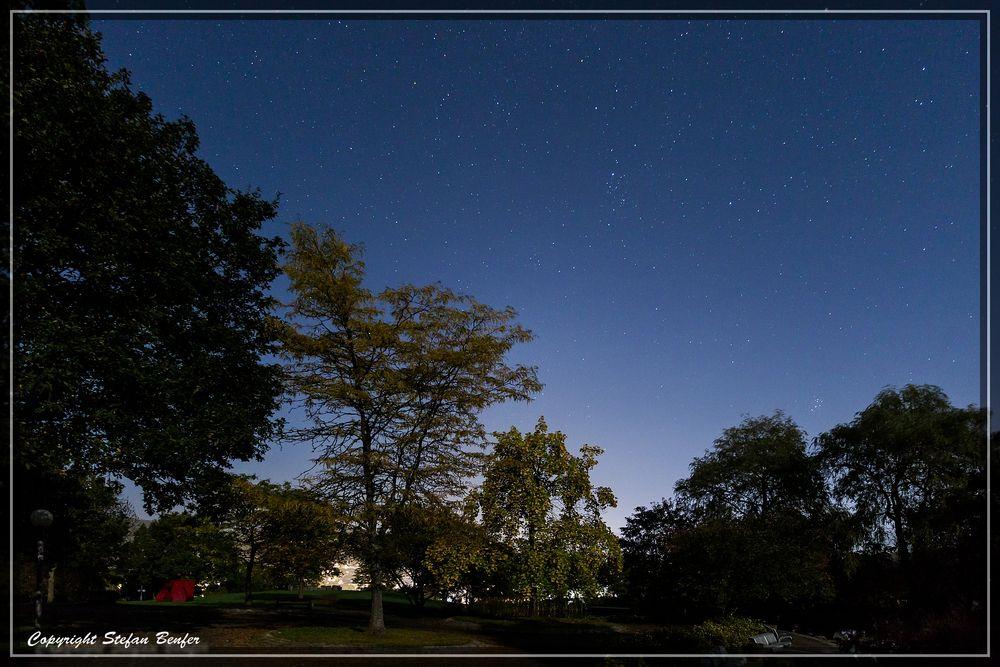 Nachts im Kurpark 2