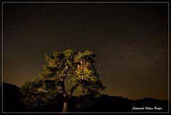 Nachts in Wittgenstein