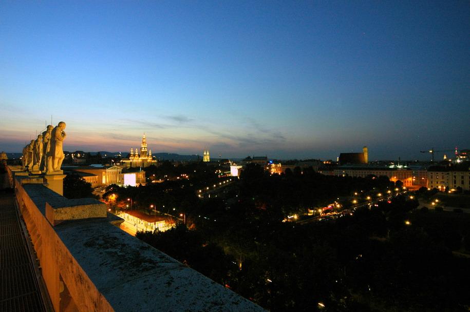 Nachts über den Dächern Wiens