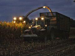 Nachtschicht auf dem Maisfeld ....