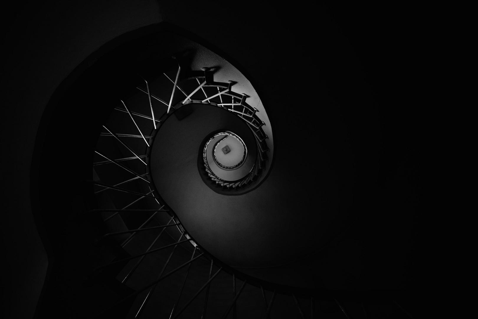 Nachtschnecke