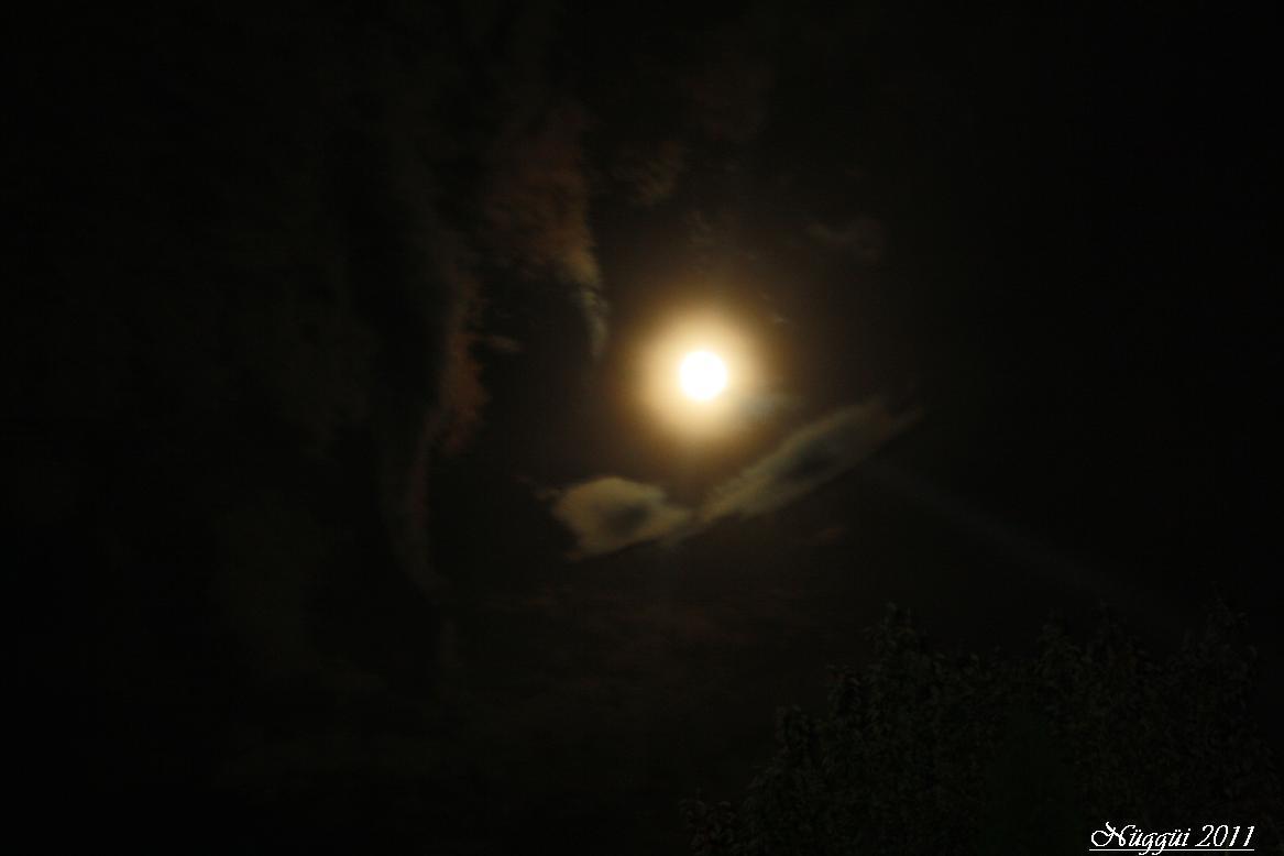Nachtsonne