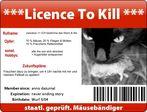 Nackenverspannungs-Spezialist Dr. med. Felidae