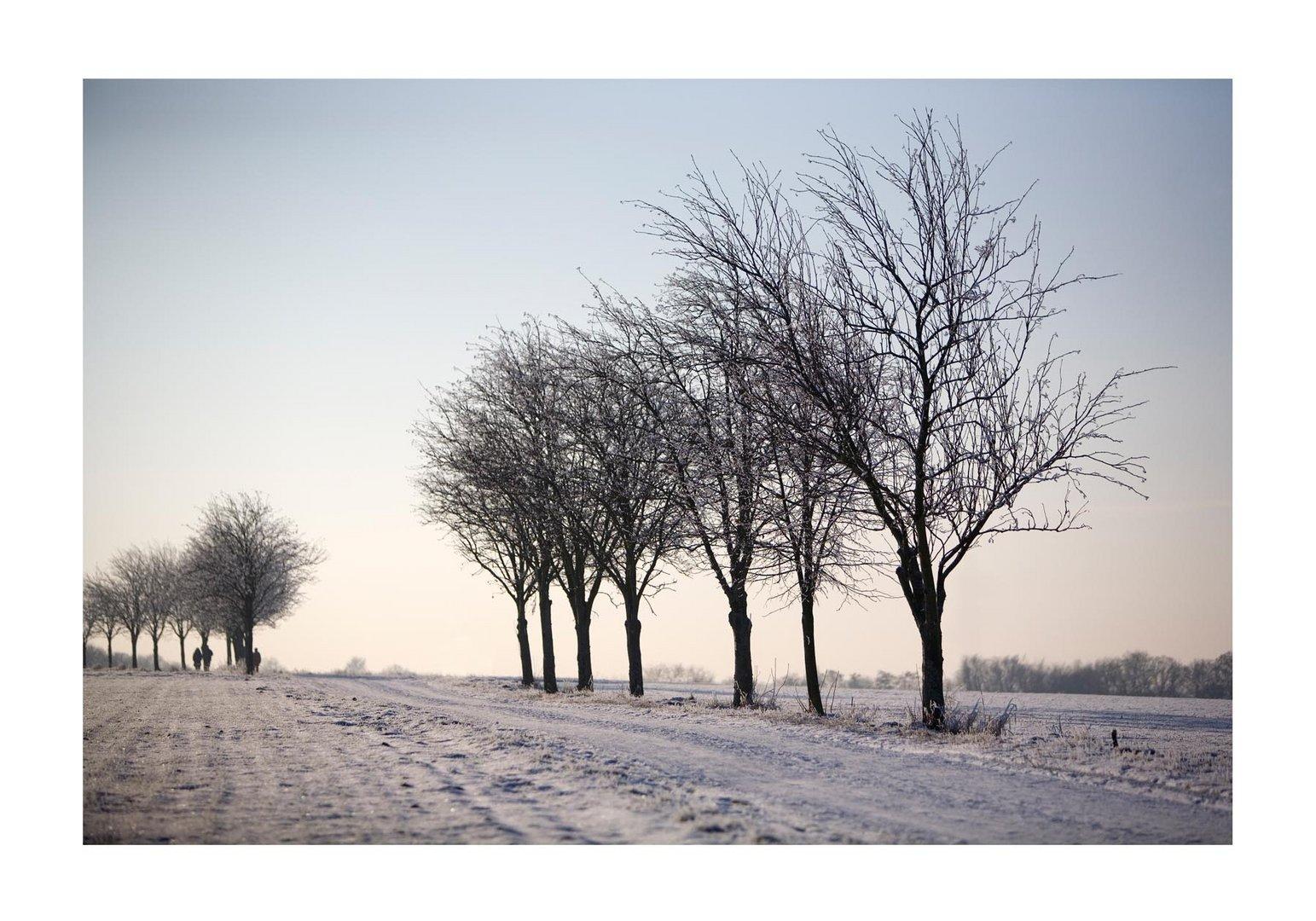 Nackt im Winter