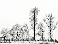 Nackt und bloß im Schnee