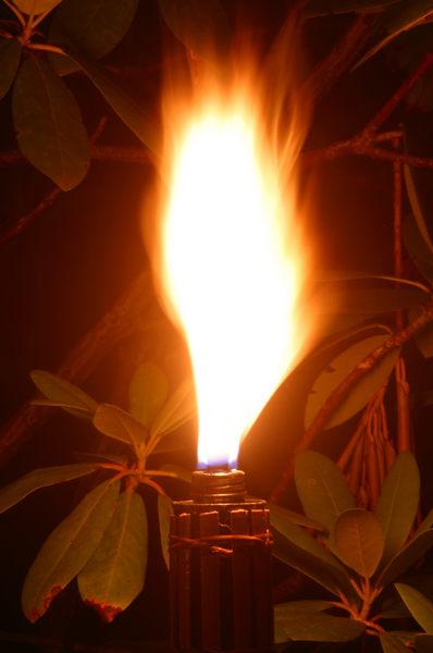 Nächtliche Flamme