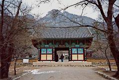 Naesosa Tempel (MW 1997/2 - m).jpg