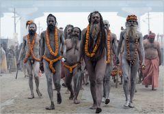 Nagas ~ The Ram Diaries