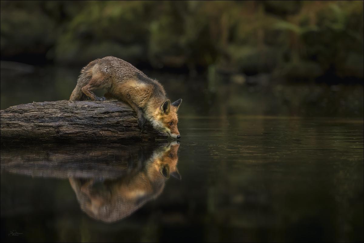 Nah am Wasser...