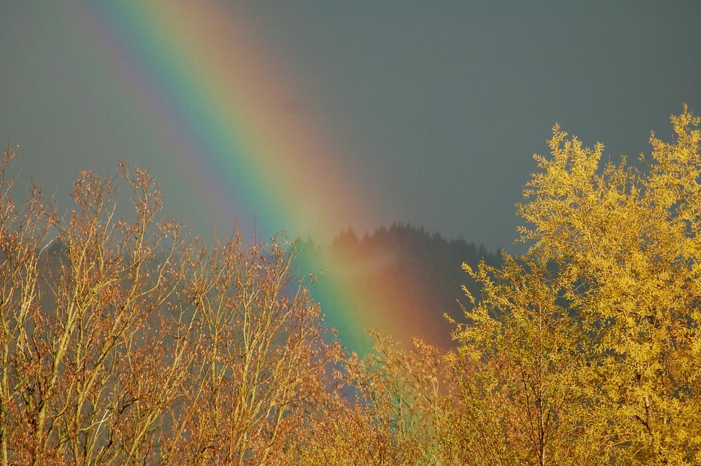 Nahaufnahme Regenbogen