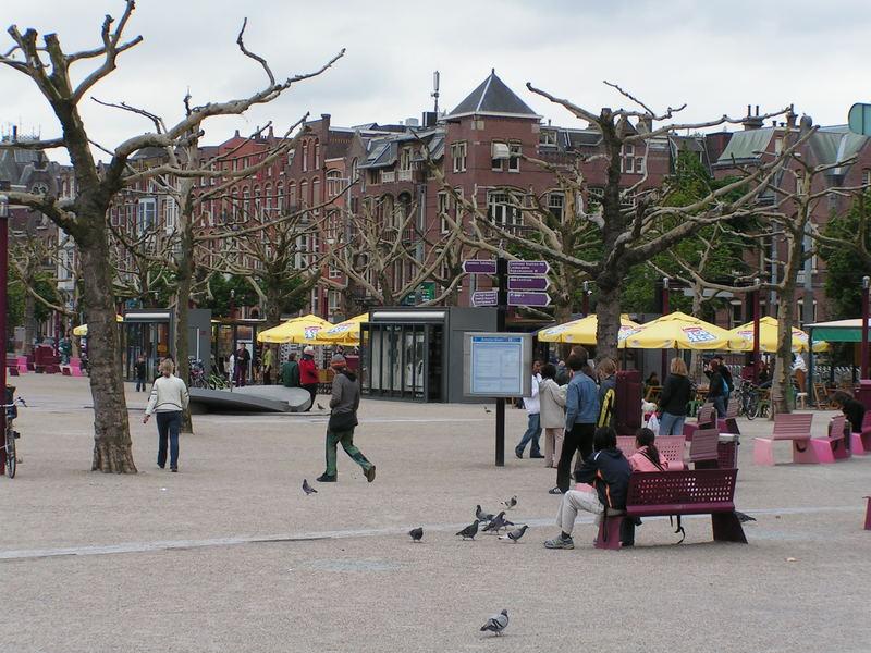naked trees in amsterdan's square
