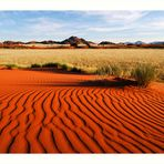 Namib desert II