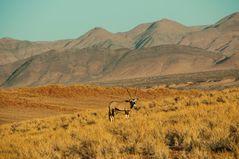 Namib-Randgebiet