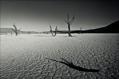 Namibia #13