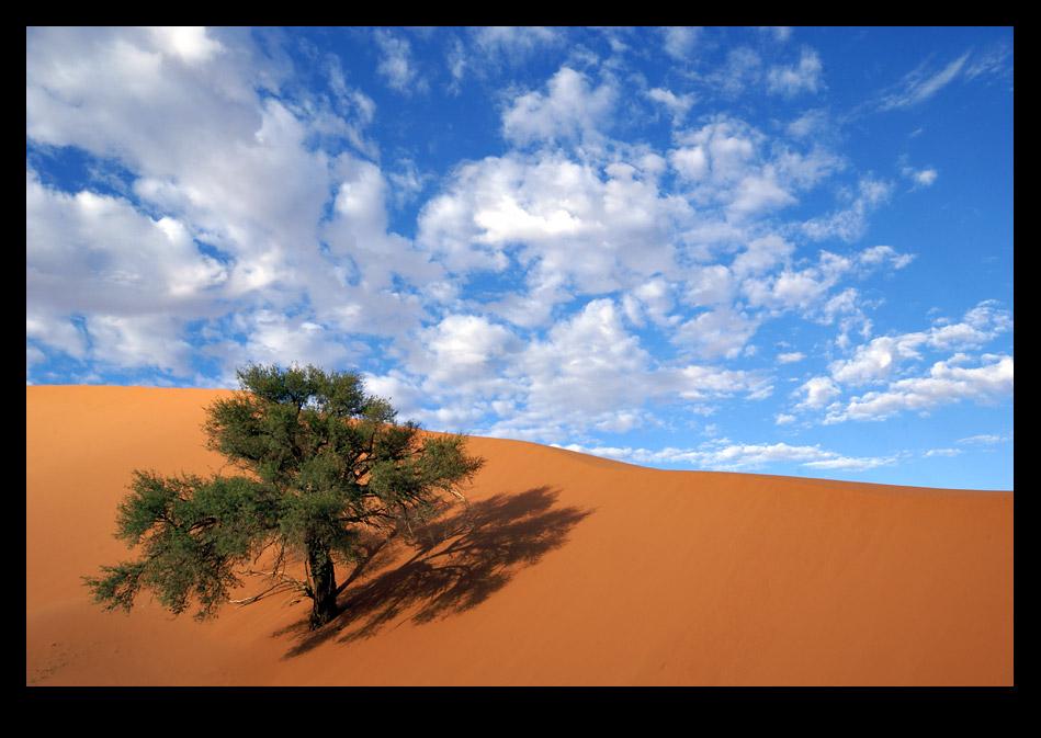 Namibia 2007 / Bildimpression 002