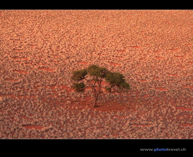 Namibia 29