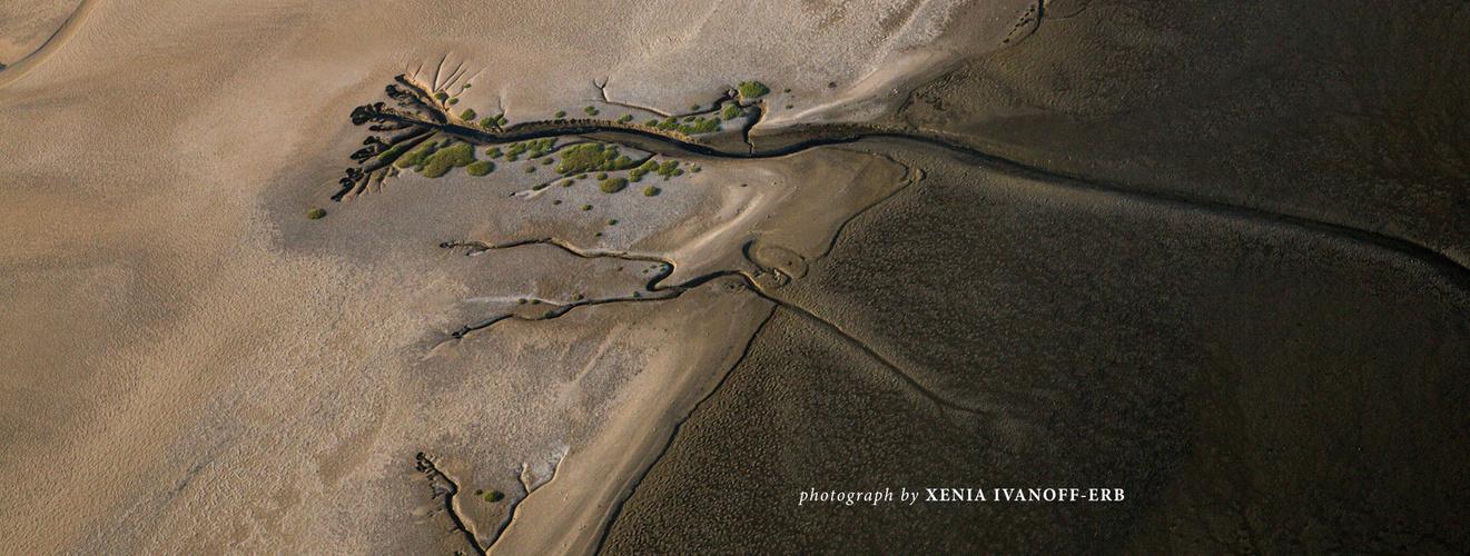 Namibia - Coastal Habitats