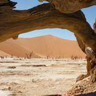 Namibia Dead Vlei