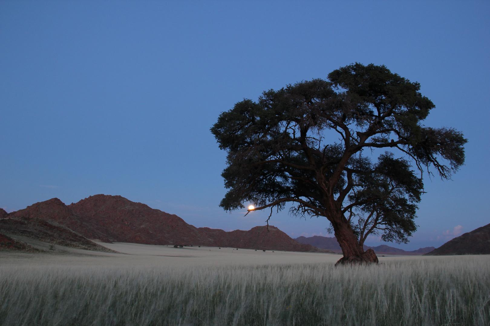 Namibia - Kanaan der Mond verabschiedet sich