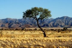 Namibia - Little Sossusvlei