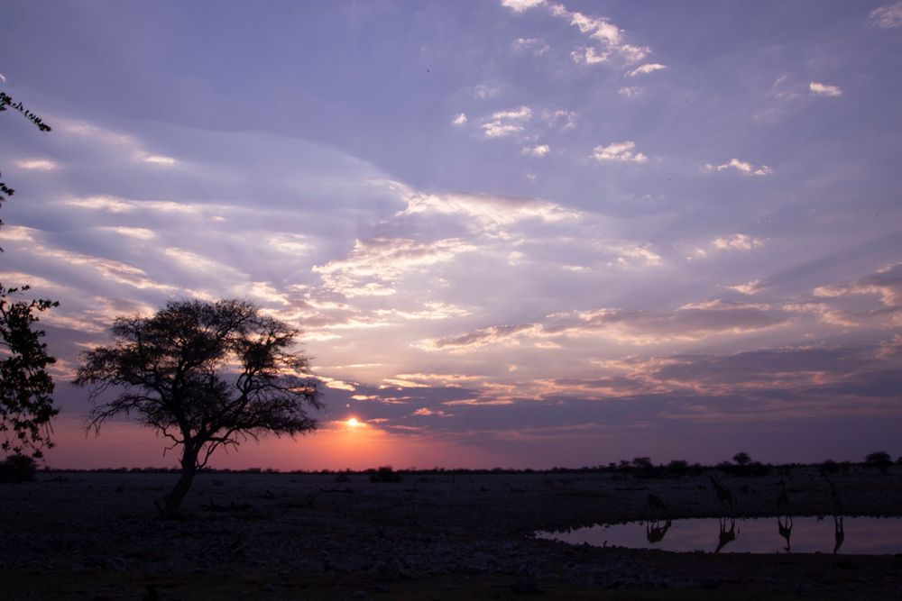 Namibia Series 01
