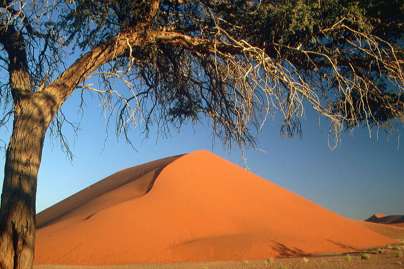 Namibia: Sossousvlei - Düne 45