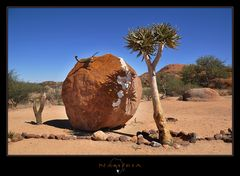 Namibia Stillife