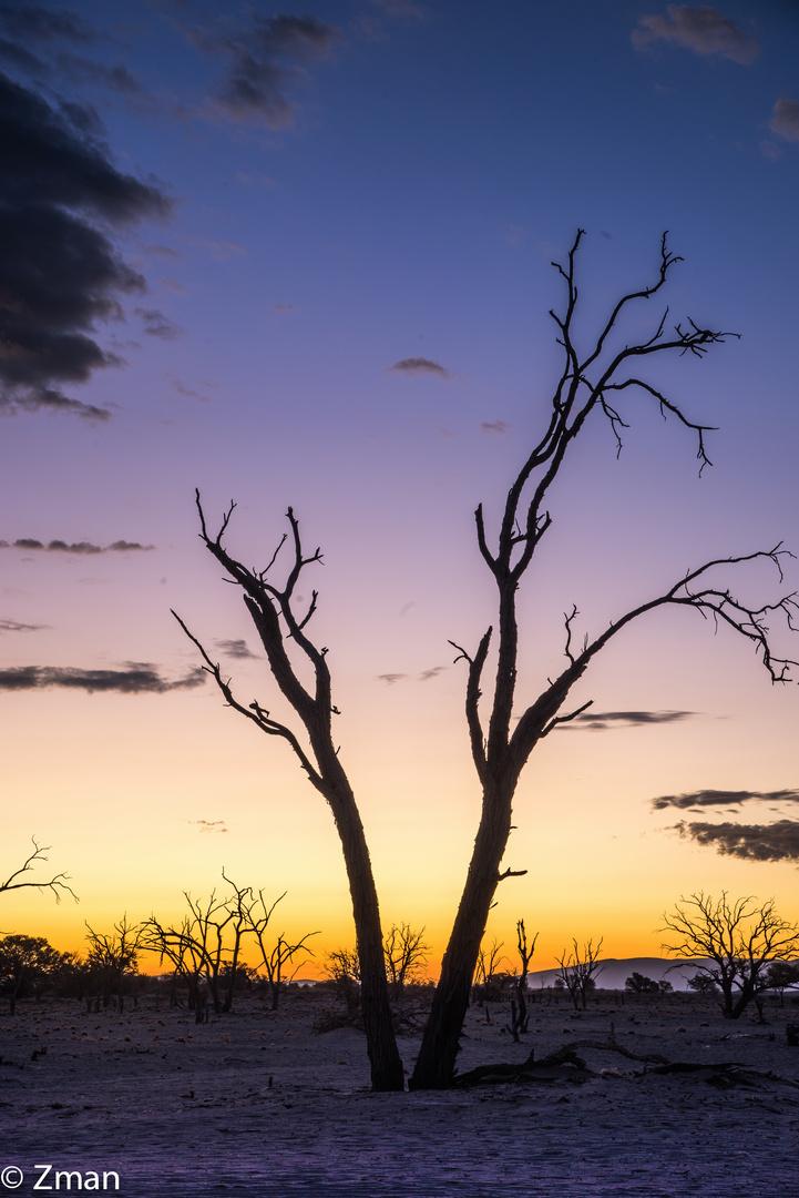 Namibia The Wild 05