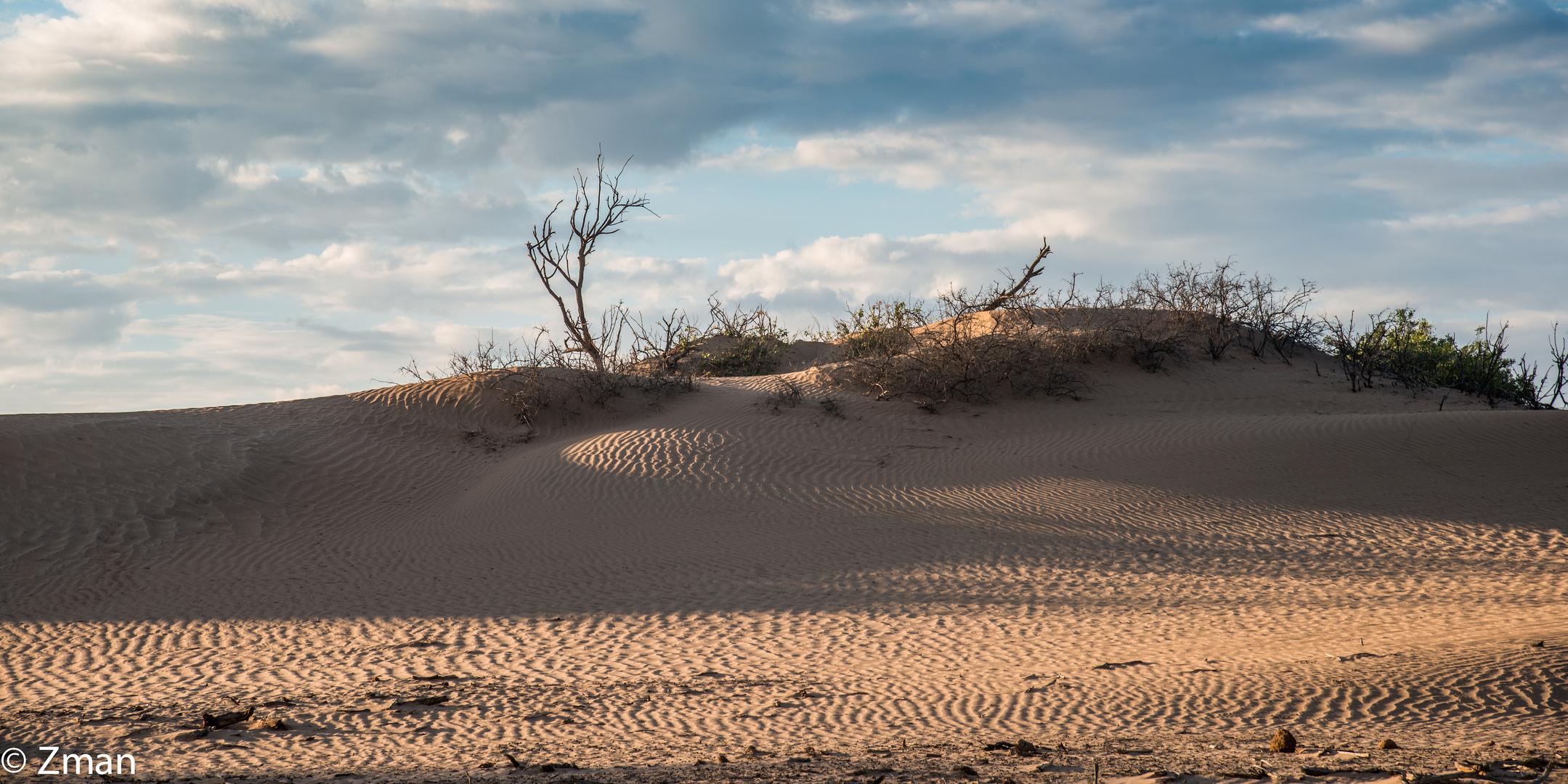 Namibia The Wild 22