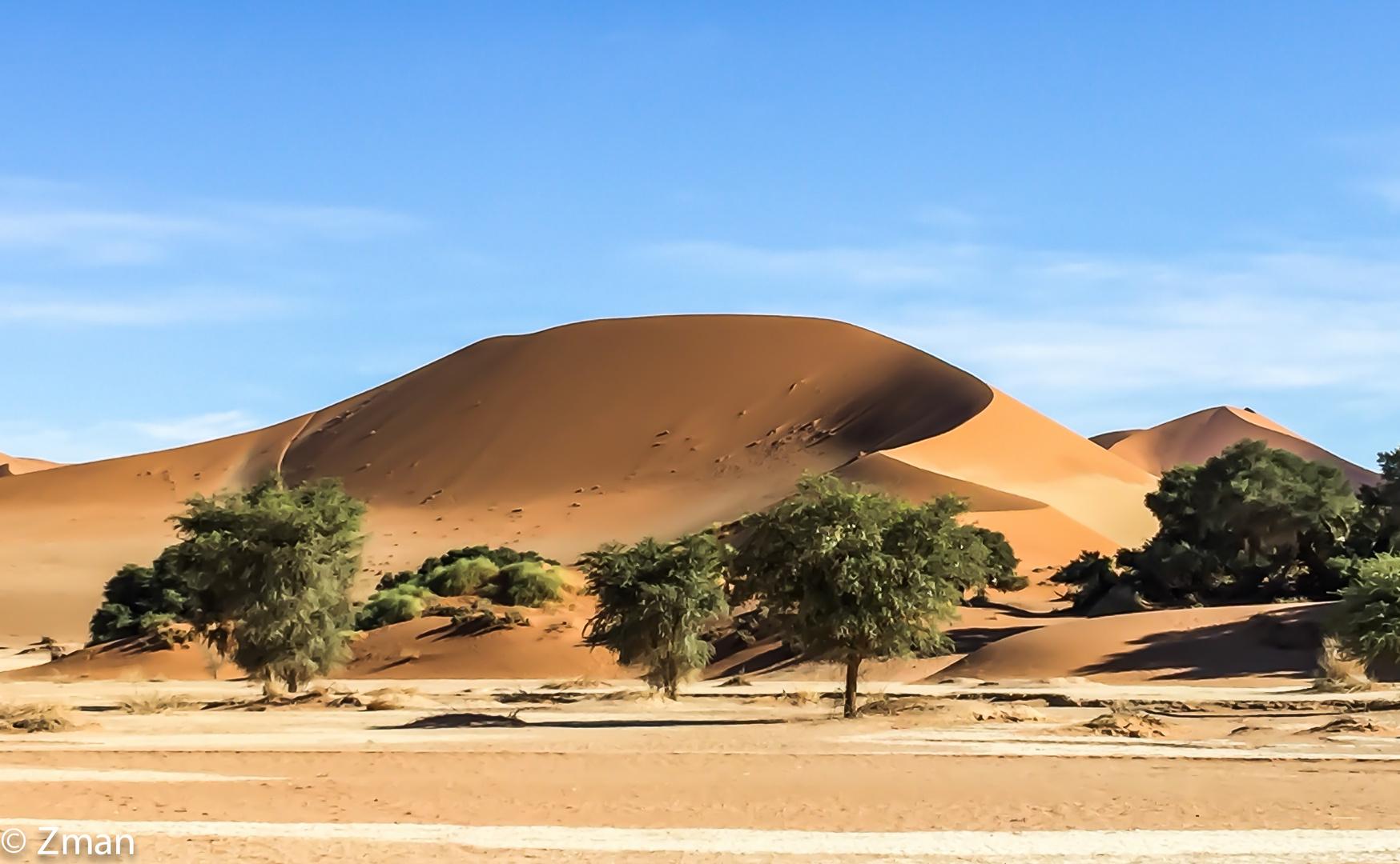 Namibia The Wild 23