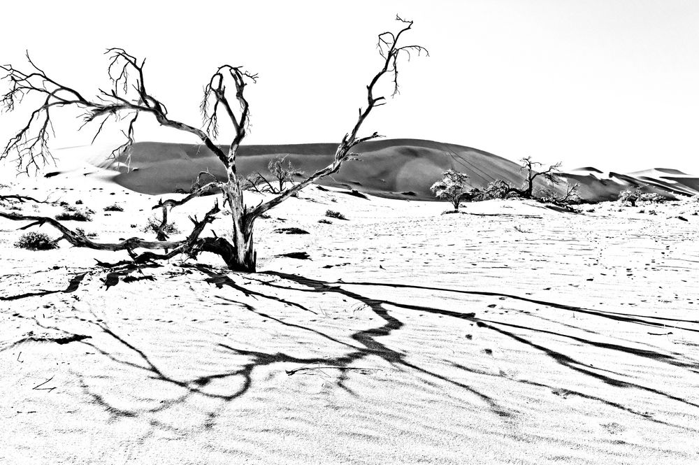 Namibia VI