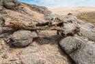 Namibia Wilderness 08