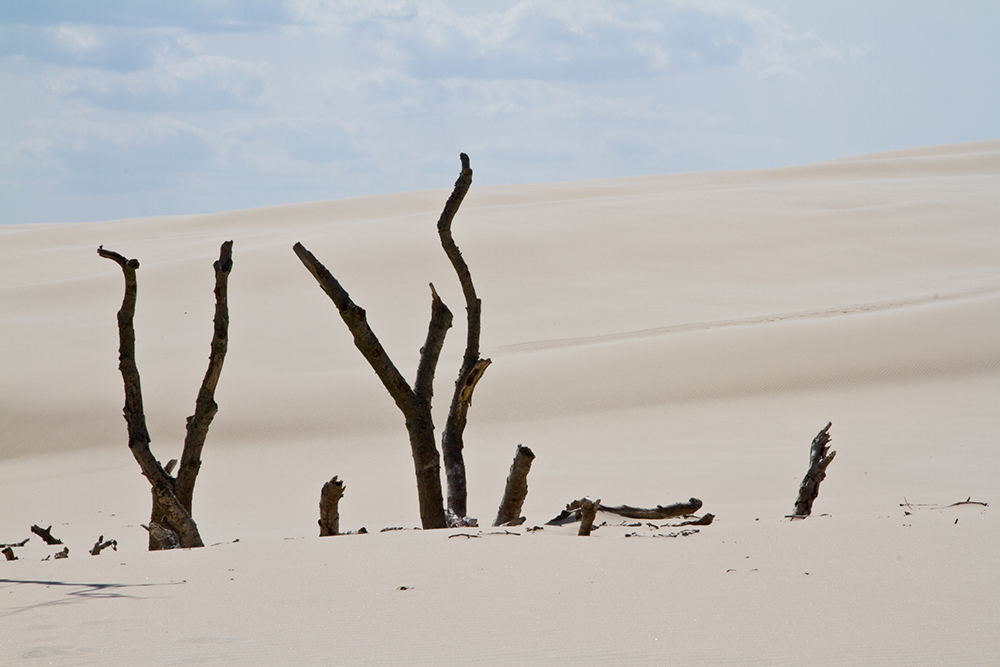 Namibwüste mitten in Polen