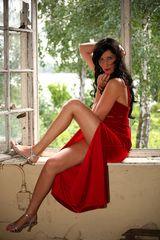 Nancy Kleid rot