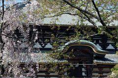 Nara I