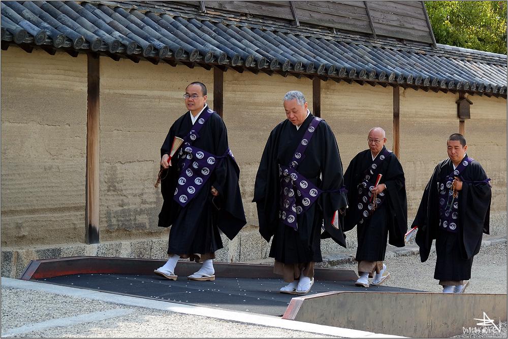 Nara VI
