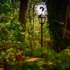 ...Narnia...