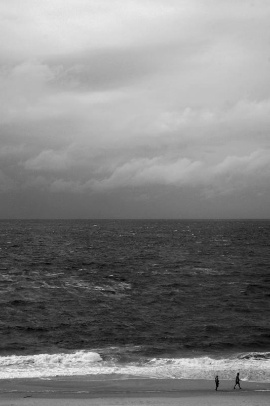 nase im wind #2