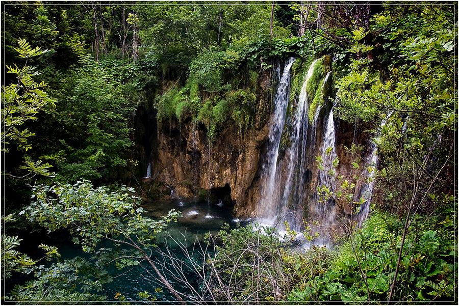 nasser urwald foto  bild  landschaft wasserfälle bach