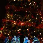 Natale in casa Carosella
