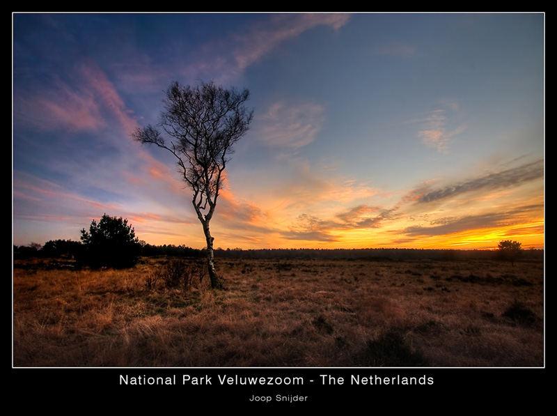 National Park Veluwezoom - The Netherlands
