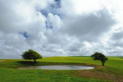 National Trust - Ditchling Beacon