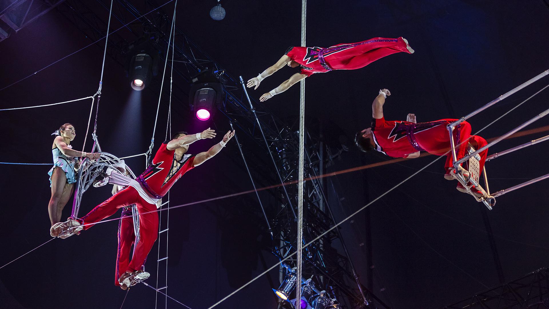 nationalcircus pjÖngjang (3) foto & bild | circus, zirkus