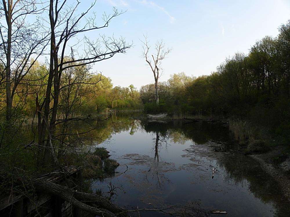 Nationalpark Donauauen