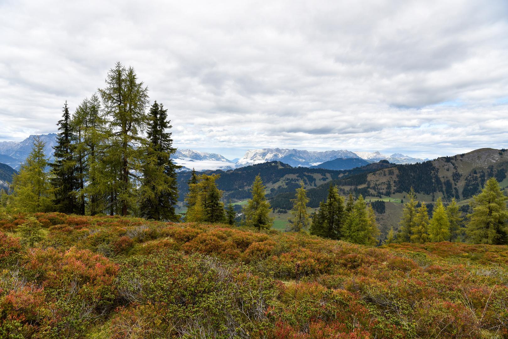 Nationalpark Hohe Tauern 06